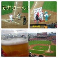 カープ対巨人2017/04/26