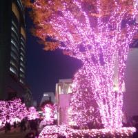 新宿サザンテラスのクリスマス  2016
