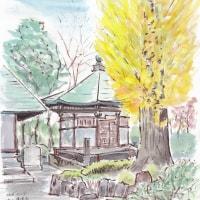 銀杏を求めて近くのお寺へ出かけました(流山/東福寺)