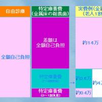 金属床総義歯1床当たり29万円厚生労働省(全国平均?)