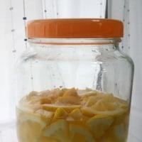 レモン酢っす!