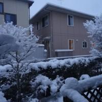 今季最高降雪