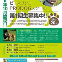 犬を飼育する専門家を育成する学校 ピースワンコが今秋開校