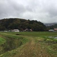 ◇11月発送◇特別栽培米◇