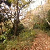 八菅神社から中津川CCゴルフ場方面へ