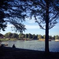 公園で秋を感じて…。