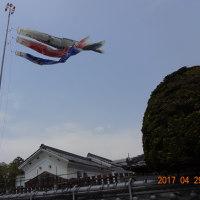 """郷愁誘う里山、""""真っ青新緑眺望""""山間ドライブ!"""