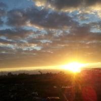 またまた朝陽