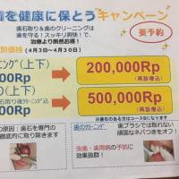 歯の健康キャンペーン