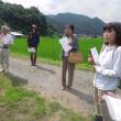 菊の視察研修が有り西条の可部さんの菊畑をみせてもらいました