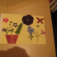 「押し花はがき」を作ってみませんか?