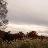蓼科紅葉メグり2