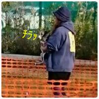 NPAルアーコーシング  JapanCup2017 Series 7thに参加する その2