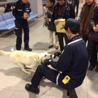 関西国際空港舞台裏・税関