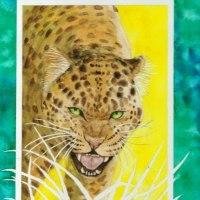 絵画販売・水彩原画「豹」「三羽のカモメ」
