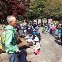 今日は岩本山の観察会でした。大勢の方々の参加がありうれしい限りです。