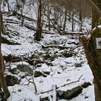仰鳥帽子山に行ってきました 1月17日