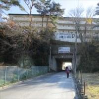 11/26 東北旅行(7) 松島かき小屋