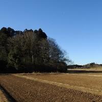 地元の谷地に行ってきました(平成29年02月19日)。