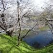 4月、春を愛でる「さくら咲く国」に、「すみれの花咲く頃」・・・・。