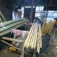 竹の運搬!