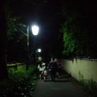 東京大散歩