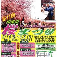 『第11回小出川桜まつり』のご案内