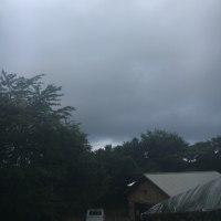 北陸地方も梅雨入りしたようです。