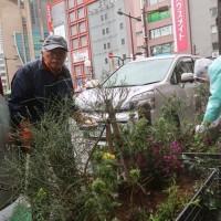 ●3/21 環境の緑化と美化報告 花の植え替え