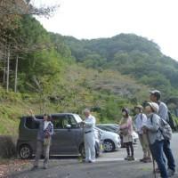 【ガイド】木のカタチとメッセージ&檜原村丸ごとドライブ!