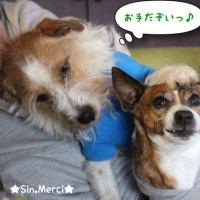 日常の一コマ(Sin & Merci)