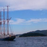 景虎Sailing