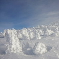 2017年2月11日 北八甲田 赤倉岳の樹氷