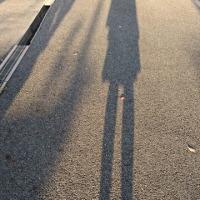 長い影 痩せなきゃ🎵