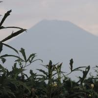 今朝の富士と朝焼け