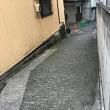 駒沢練兵場(1)