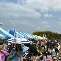 竹取公園の靴下の市、行ってきました。