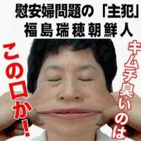【日本は公開するつもりが無かったのは慰安婦の多くは日本人だったから・・・かも?】(慰安婦問題)公開された資料に中国人驚く「聞いていたことと全然違う」