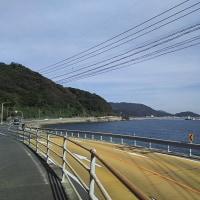 糸島30KMペース走