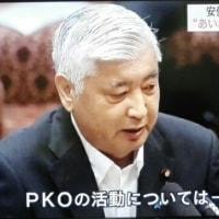 安保法案PKO活動、自衛隊員を使い捨て!自衛隊が民間人を射殺した場合、殺人罪になる可能性!