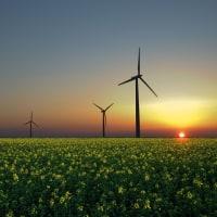 デンマーク: sustainable energy で、チャンピオン