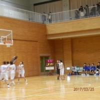 羽曳野カップ・予選リーグ