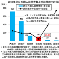 ホテル・旅館の現状と課題/観光地奈良の勝ち残り戦略(110)