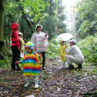 大雨の森遊び