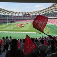 ラグビー日本代表アイルランド戦