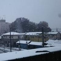 初雪ってか!!