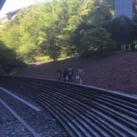 駅からハイキング/薫る風レインボーブリッジが繋ぐ古と今
