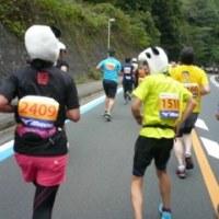 『舞鶴赤れんがハーフマラソン』出場!
