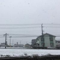 *雪*11/24(木)