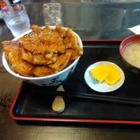 帯広《とん田: 豚丼》、北海道: チョコ